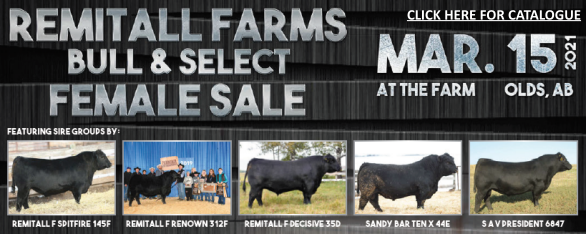 Click here to read the 2021 Bull Sale Catalogue.